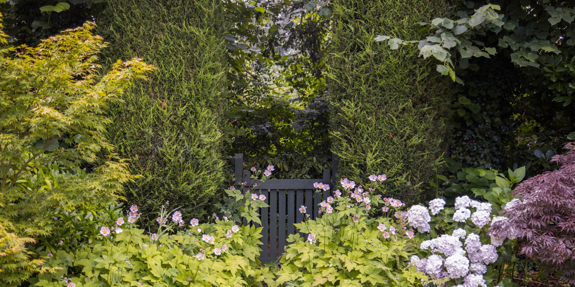 Gate between hedge, surrounded by flowers